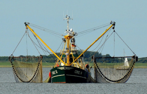 Registration services for fishing and fish processing vessels under the flag of convenience